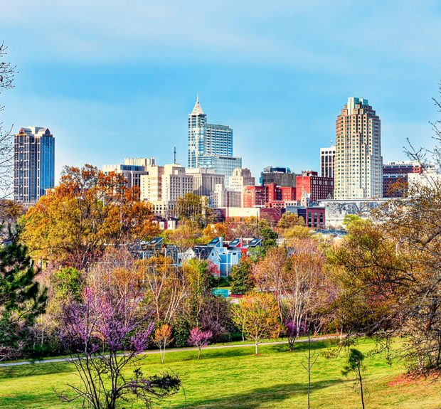 A colorful downtown Raleigh, North Carolina cityscape view from a park in spring.